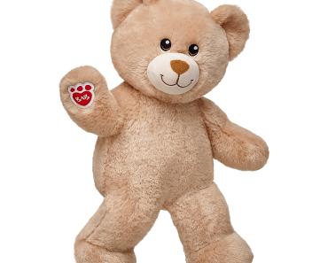 teddy bear survey