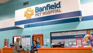 banfield pet hospital survey